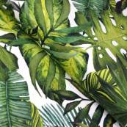 Tissu jersey motif feuille monstera - Blanc et vert - Oeko-Tex ® - Stenzo Textiles ®