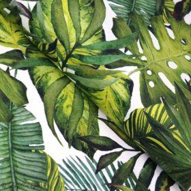 Tissu jersey motif feuille monstera - Blanc et vert - Oeko-Tex ® - Stenzo Textiles ® Stenzo Textiles ® - Tissus Oekotex - 1