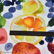 Tissu enduit ou laminé motif fruits - Multicolore - BIO - Cloud 9 ® Cloud9 Fabrics ® - Tissus BIO - 6