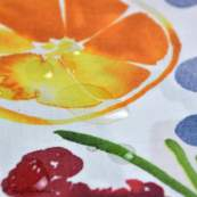 Tissu enduit ou laminé motif fruits - Multicolore - BIO - Cloud 9 ® Cloud9 Fabrics ® - Tissus BIO - 3