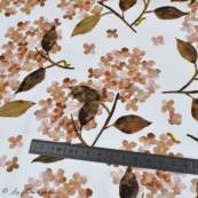 "Tissu french terry coton motif fleur ""Hortensia"" - Blanc et tons roses - Oeko-Tex ® Family Fabrics ® - 6"