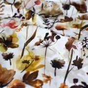 "Tissu jersey coton motif fleur ""Wild Flowers"" - Blanc et tons marrons - Oeko-Tex ® Family Fabrics ® - 3"
