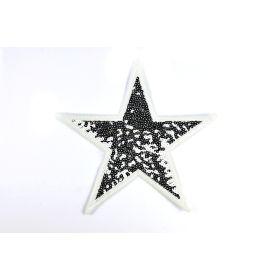 Ecusson sequin étoile - Argenté - à coudre